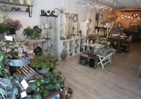 Butikker,Til salg,1246